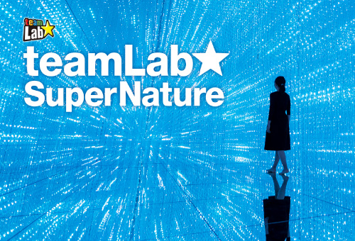 """teamLab SuperNature Macao"" ホテルパッケージ"