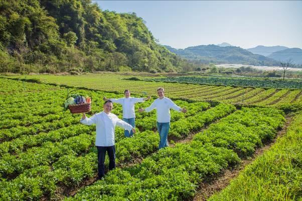 「金沙廚藝」有機時令菜品 - 金沙中國
